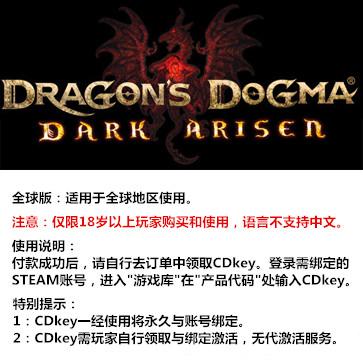 龙之信条:黑暗崛起 PC版 全球版key