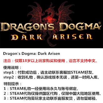 龙之信条:黑暗崛起 PC版 STEAM国区代购(标准版)