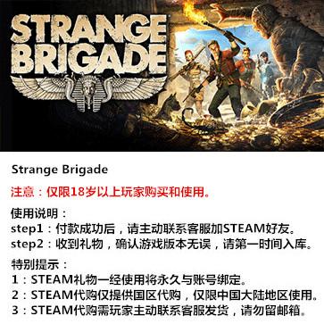 奇异小队 PC版 中文 STEAM国区代购(标准版)