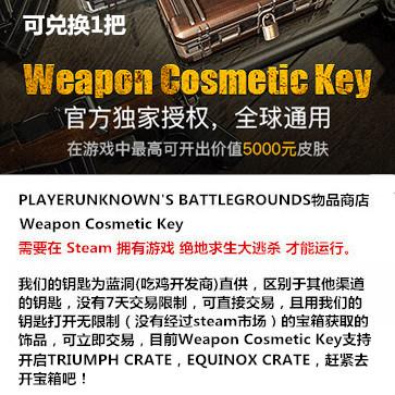绝地求生大逃杀 PC版 武器Key