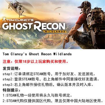 幽灵行动:荒野 PC版 中文 STEAM国区代购(标准版)
