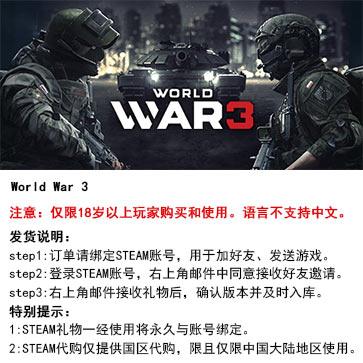 第三次世界大战 PC版  STEAM国区代购(标准版)
