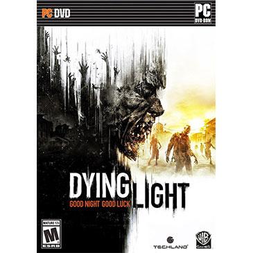 消逝的光芒 PC版