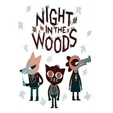 林中之夜 PC版