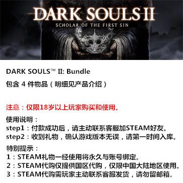 黑暗之魂2 PC版 中文 STEAM国区代购(礼包)