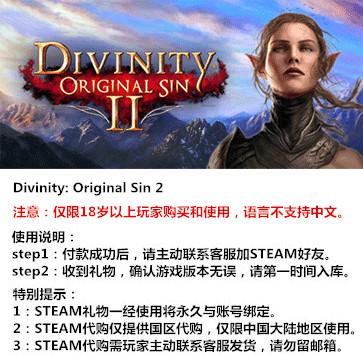 神界:原罪2 PC版 STEAM国区代购(标准版)