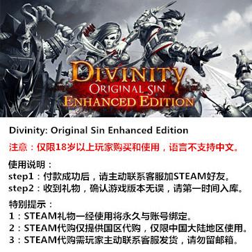 神界:原罪 PC版 STEAM国区代购(标准版)