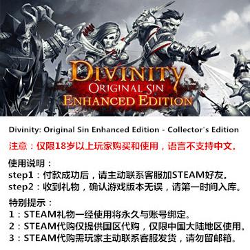 神界:原罪 PC版 STEAM国区代购(豪华版)