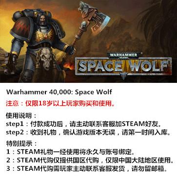 战锤40K:太空狼 PC版 STEAM国区代购(标准版)