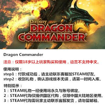 神界:龙之指挥官 PC版 STEAM国区代购(标准版)