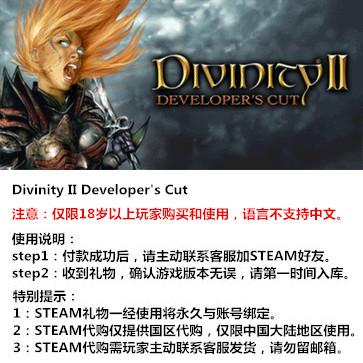 神界2:开发者版 PC版 STEAM国区代购(标准版)