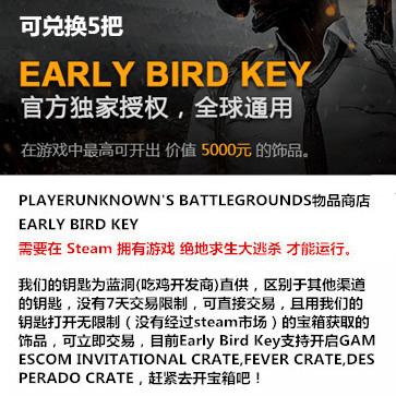 绝地求生大逃杀 PC版 饰品Key(5把)