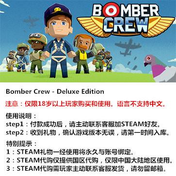 轰炸机小队 PC版 STEAM国区代购(豪华版)