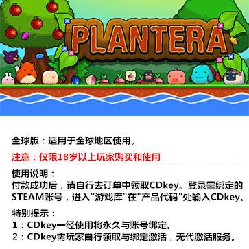 世纪之花 PC版 中文版 全球版key
