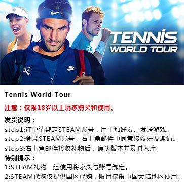 网球世界巡回赛 PC版 中文 STEAM国区代购(标准版)