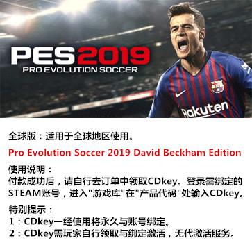 实况足球2019 PES2019 PC版 中文 全球版Key(贝克汉姆版)