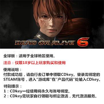 死或生6 PC版 中文 全球版key